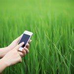 descargar frases de amor para enviar por celular, nuevas frases de amor para enviar por celular