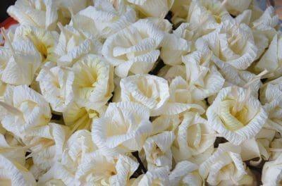 Compartir Mensajes Para Mi Madre Fallecida | Feliz dia de la Madre