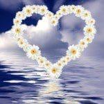 bellos mensajes de textos para mi primer amor,bonitos pensamientos de amor para expresarle a mi pareja