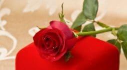 Enviar Mensajes De Amor Para La Mujer Que Amo