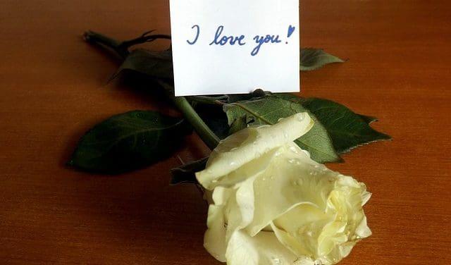 Frases para dedicar a mi novio   Frases de amor
