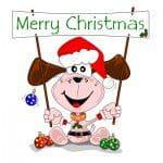frases para saludar en navidad , saludos de navidad