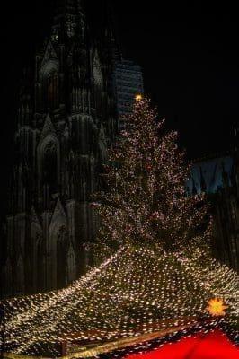 Frases de cariño en Noche Buena | Saludos de Navidad