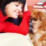 Frases de afecto hacia tu mascota, mensajes de afecto hacia tu mascota, textos de afecto hacia tu mascota, dedicatorias de afecto hacia tu mascota, pensamientos de afecto hacia tu mascota, palabras de afecto hacia tu mascota, ejemplos de afecto hacia tu mascota, tweet de afecto hacia tu mascota, expresar frases de afecto hacia tu mascota