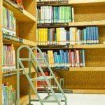 frases de felicitaciones a mi amigo Bibliotecólogo, mensajes de felicitaciones a mi amigo Bibliotecólogo, textos de felicitaciones a mi amigo Bibliotecólogo, dedicatorias de felicitaciones a mi amigo Bibliotecólogo, pensamientos de felicitaciones a mi amigo Bibliotecólogo, palabras de felicitaciones a mi amigo Bibliotecólogo