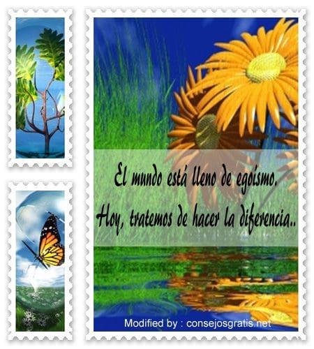 buscar originales reflexiones de la vida,buscar originales tarjetas con reflexiones de la vida