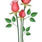 mensajes por el día de la Madre para las Madres fallecidas, descargar mensajes por el día de la Madre para las Madres fallecidas