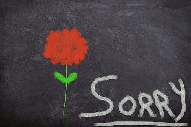Lindos Mensajes Para Pedir Disculpas A Tu Mamá Frases De