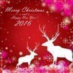 las mejores dedicatorias de Navidad, bajar frases de Navidad