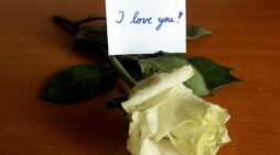 Lindos Mensajes De Declaración Amorosa│Buscar Frases De Declaración Amorosa