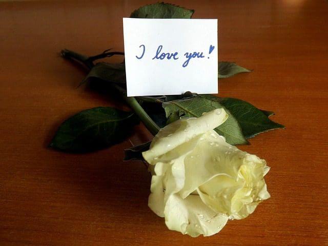 Frases para dedicar a mi novio | Frases de amor
