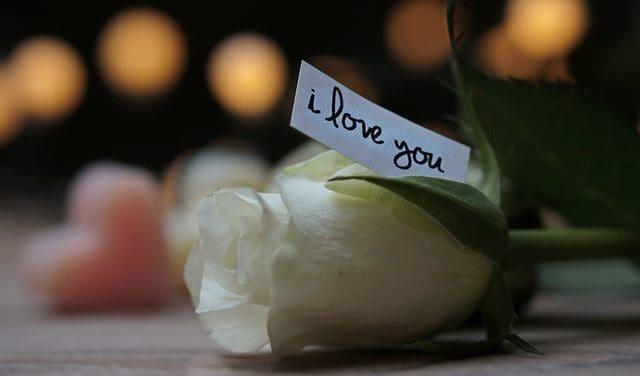Mensajes De Amor Para Mi Nueva Pareja│Lindas Frases De Amor Para Tu Nueva Pareja