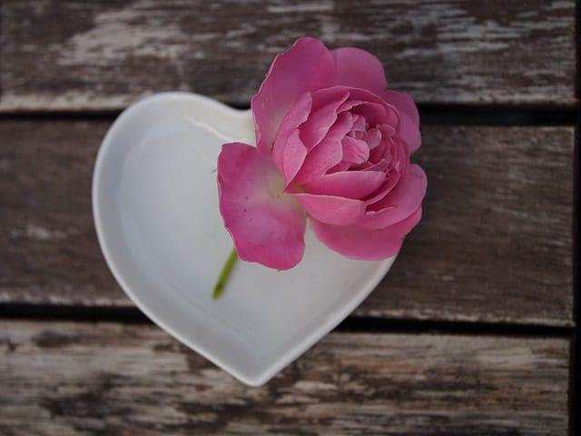 Lindos Mensajes De Amor Para Mi Novia│Enviar Bellas Frases De Amor Para Tu Enamorada