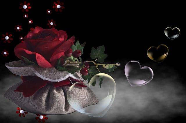 Buscar Textos De San Valentín│Lindas Frases De San Valentín