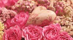 Bonitos poemas de amor   Mensajes de amor para mi pareja